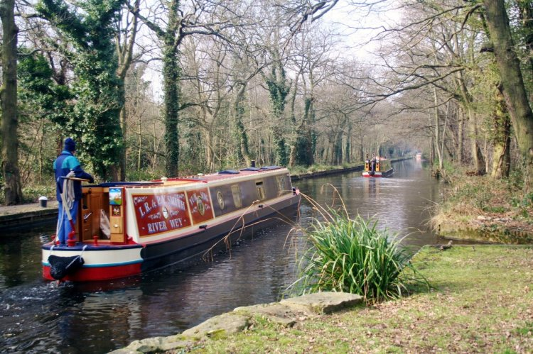 Boats on the Basingstoke canal