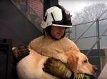 VIDEO: Firefighters receive life-saving oxygen masks forpets